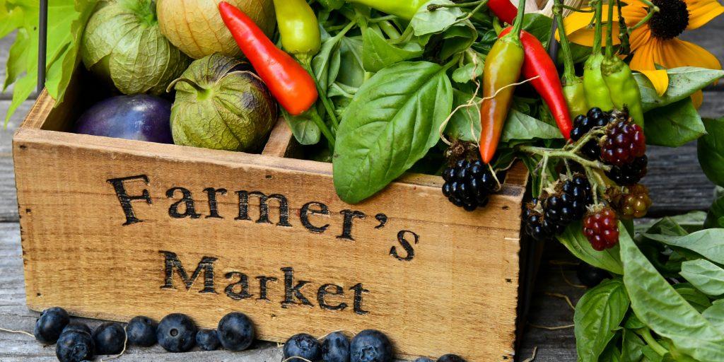 environmental benefits of local food