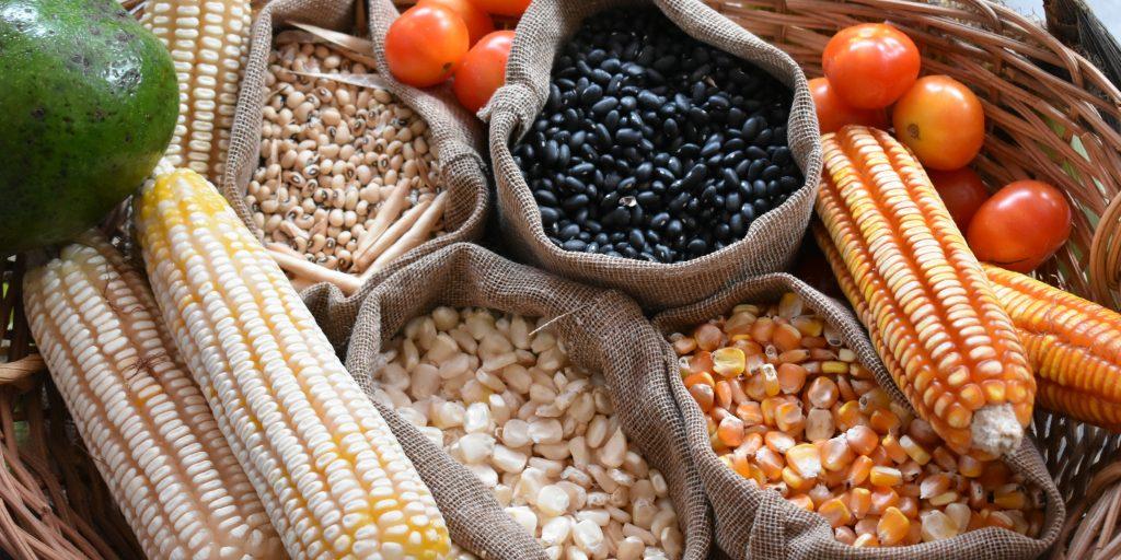 local whole grain corn